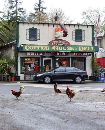 Fair Oaks Coffee House and Deli