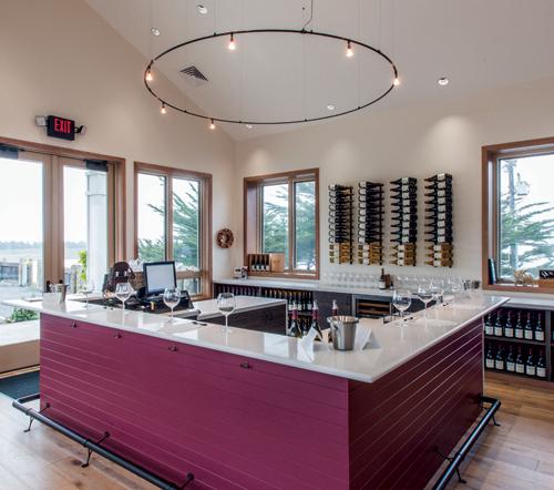 Sonoma Coast Vineyards
