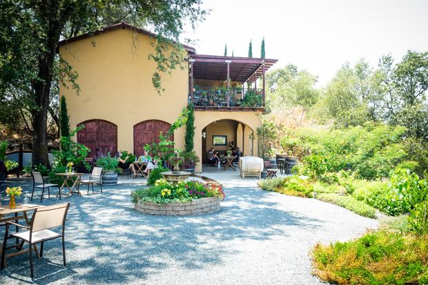 cristaldi vineyards