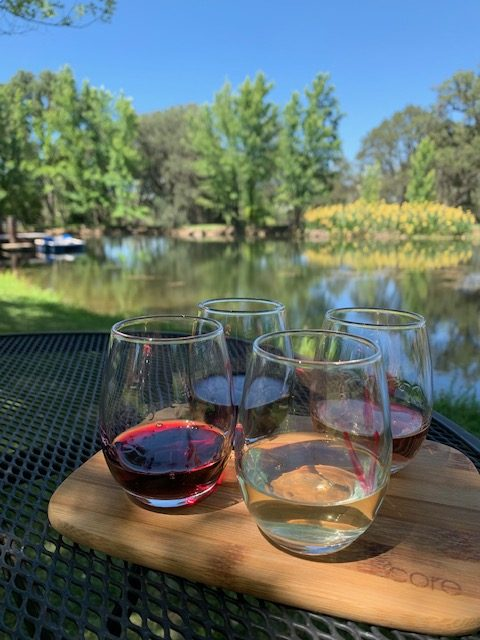 wine therapy flights