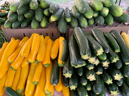 Cucumbers and Squash from Yanez, Oak Park