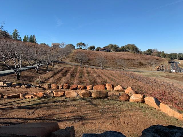 la mesa vineyards