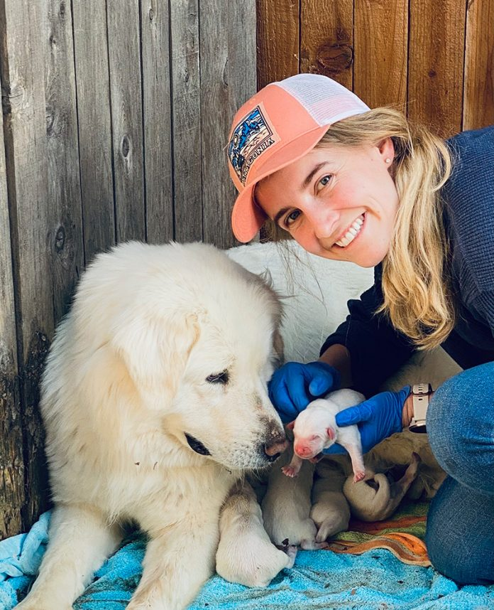 britt and lady with her puppies