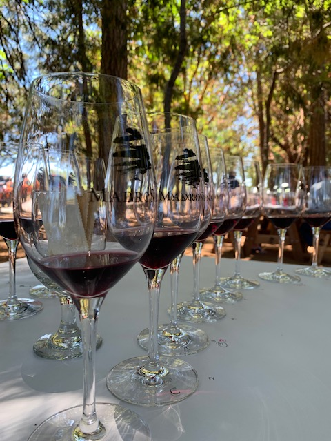 wine glasses lined up at madrona vineyards during great out there wine event