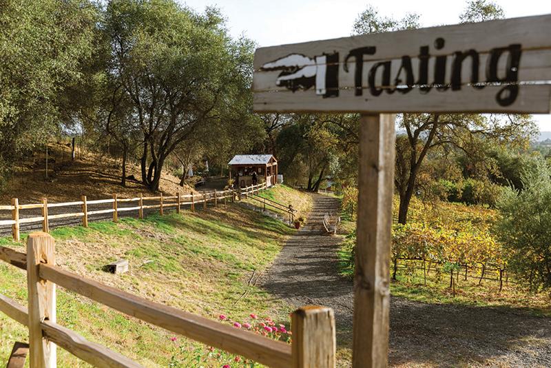 wine taste along the wine & ale trail