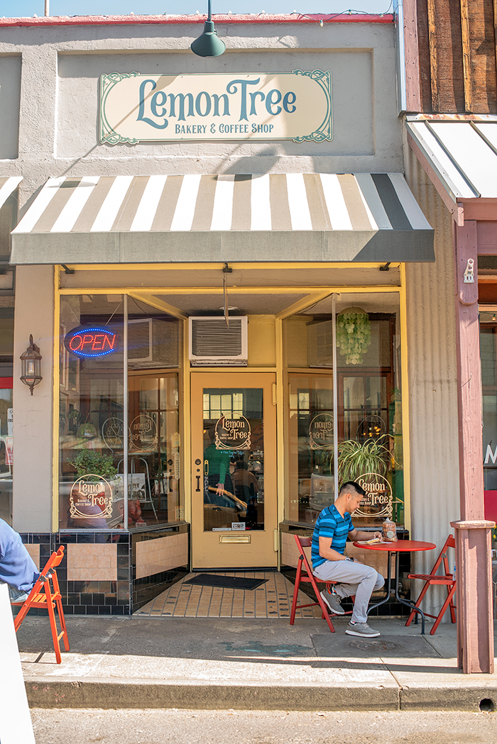 lemon tree bakery and coffee shop in angels camp