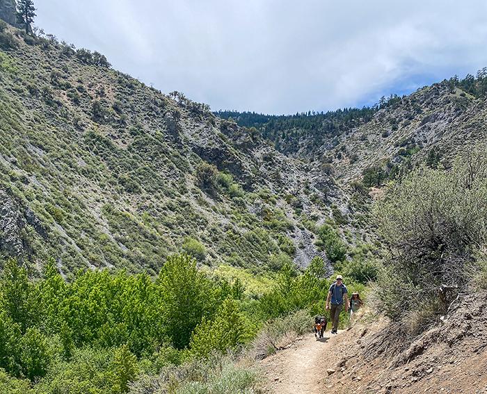 hunter creek trail view