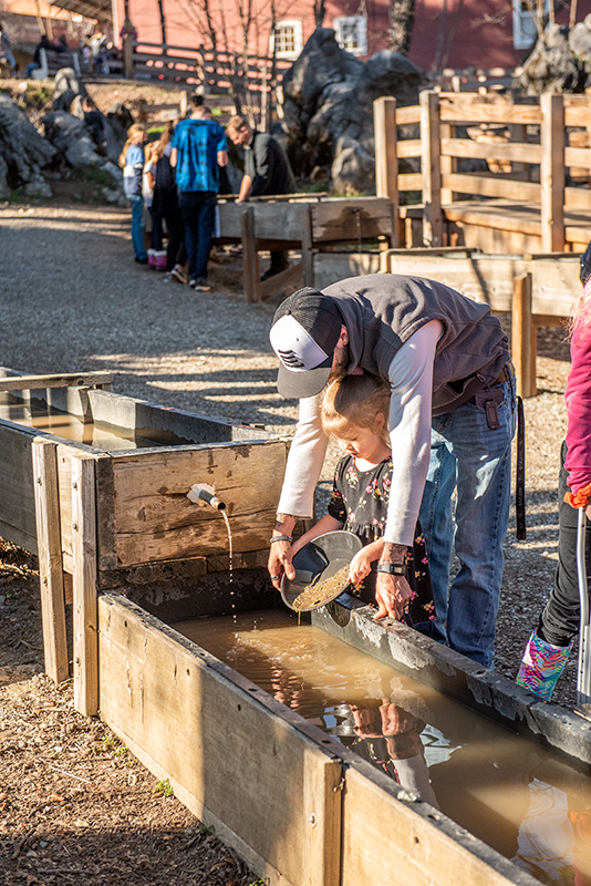 panning for gold in Columbia